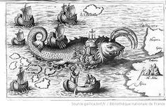 This whale is so large you can dock your ship ON it and hold mass! XD [Illustrations de Nova typis transact navigatio...] / [Non identifié] ; Le Père Honorius Philiponus, aut. du texte - 3