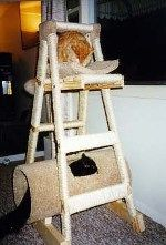 image cat tree ladder - Google Search