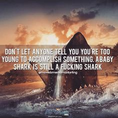 A baby shark wont ignore you for his dinner! #marketingdigital #marketing #success #business #entrepreneur #greatness