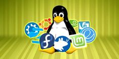 The Best Linux Operating Systems