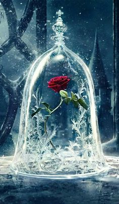 """"""" Sufi Bezels..."""" # When God Wishes to Conquer a Heart, He Entrusts It With Secrets, Which the Heart Then Perceives, And Proclaims !!! Artwork Credit """" Beauty and the Beast Cover Poster by Disney """" __()__ Boundless Divine Love"""