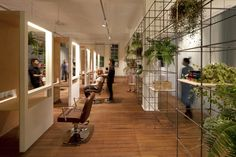 facet studio blu creativity cut treatment | re-bar shelf system with plants and curtains suspended from rails