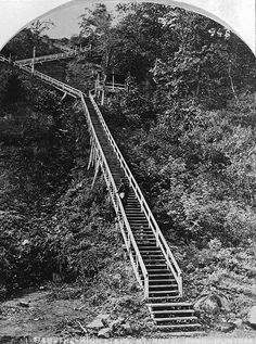VIEW-948.1 The High Steps, Mount Royal Park, Montreal, QC, about 1878 Notman & Sandham about 1878, 19th century Notman photographic Archives - McCord Museum  VIEW-948.1 Le grand escalier, parc du Mont-Royal, Montréal, QC, vers 1878 Notman & Sandham Vers 1878, 19e siècle Archives photographiques Notman - Musée McCord  To see the image file on the McCord Museum website, click on the following link: www.musee-mccord.qc.ca/en/collection/artifacts/VIEW-948.1  Pour voir ...