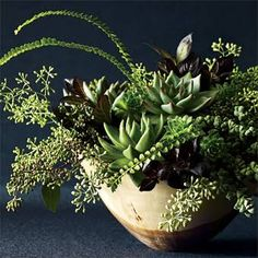 Succulents and Eucalyptus Centerpiece - Wedding Flowers