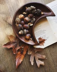 New post on bpd-witch Mabon, Samhain, Popup, Co2 Neutral, October Country, Autumn Aesthetic, Autumn Cozy, Autumn Feeling, Sabbats