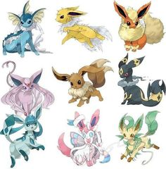 Mega evolutions?
