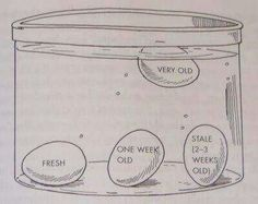 """""""Egg float test"""" to determine how fresh or how old your eggs are!"""