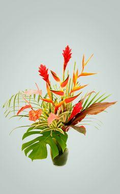 Tropical Dream | Mother's Day Gift | Tropical Flowers Hana Tropicals | Hana, Maui