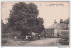 Bonnefond (Corrèze) Le Vieux Tilleul