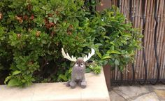 via Pink Bunny @pinkbunnyr on twitter ·  13h 13 hours ago FOUND: in Sherman Oaks, CA: Sven from #Frozen if anyone is missing him. @lostteddybear
