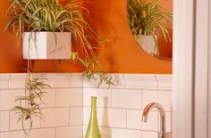 Breathe new life into your bathroom with easy, exotic plants. Your orchid may thrive in the bathroom!   from: homemadesimple.com