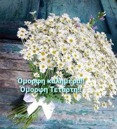 Good Morning Flowers Gif, Good Morning Good Night, Wonderful Images, The Good Place, Cool Photos, Greece, World, Spring, Beautiful