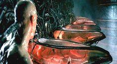 ''O mundo em que vivemos pode ser uma ilusão ou alucinação'' Afirmam pesquisadores renomados ~ Sempre Questione - Últimas noticias, Ufologia, Nova Ordem Mundial, Ciência, Religião e mais.