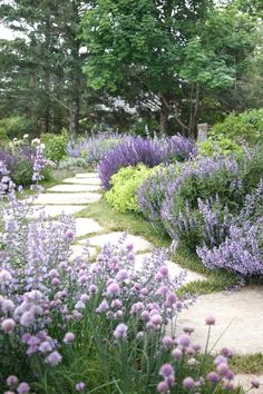 Create a beautiful yard with these creative landscape ideas with big impact. #LandscapeHome #LandscapingIdeas