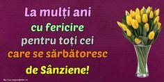 La mulți ani cu fericire pentru toți cei care se sărbătoresc de Sânziene!