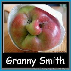 These Hilarious And Cute Food Items Are Desperate Not To Be Eaten Funny Vegetables, Fruits And Vegetables, Grumpy Cat Meme, Cat Memes, Funny Fruit, Funny Food, Strange Fruit, Weird Food, Granny Smith