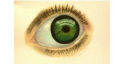 9.2 olho
