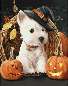 Buy Halloween Dog - Animals Paint By Number kit or check our new modern collections for adults paint by numbers. Relax and enjoy your canvas painting Highlands Terrier, West Highland Terrier, Terriers, Halloween Puppy, Halloween Diy, Paint By Number Kits, White Terrier, Dog Paintings, Amazing Paintings