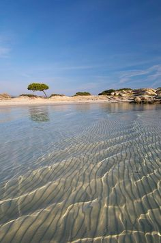 Karydi beach Chalkidiki Greece