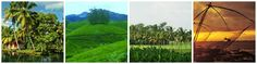 HERITAGE KERALA : Thiruvananthapuram → Kanyakumari → Kovalam → Varkala → Kollam → Alappuzha → Thekkady / Periyar → Munnar → Kochi #india #travel #tour #itinerary #tours #packages
