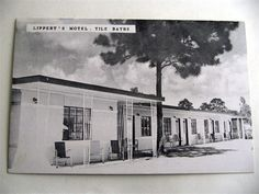 Lipperts Motel New Port Richey Florida Vintage Postcard New Port Richey Florida, Vintage Florida, Back In The Day, Motel, Old Photos, Ebay, Old Pictures, Vintage Photos