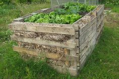 Raised bed from palettes
