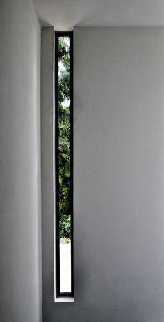 love long, thin glimpse windows
