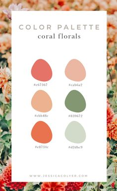 Color palettes 381961612151081051 - How to Choose a Color Scheme For Your Brand — Jessica Colyer