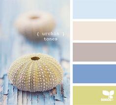 Urchin Tones by Design Seeds Design Seeds, Colour Schemes, Color Combos, Colour Palettes, Palette Pastel, Foto Picture, Color Palate, Creative Colour, Color Swatches