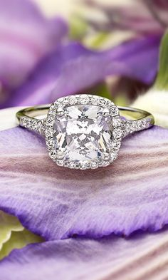 A glittering softened halo of diamonds surrounds the center gem in this elegant setting.