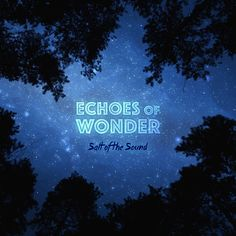 Review: Echoes Of Wonder. - Geeks Under Grace.