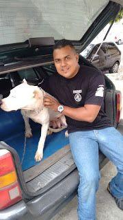 TAXI DOG MONTANHA TRANSPORTE DE ANIMAIS NO RIO DE JANEIRO: ATHENAS  30/09/2015 -- E assim o Taxi Dog Montanha...