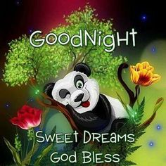 Good Night! | Good night | Good night, Good night blessings