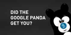 Did the Google Panda Bite You in the Ass?