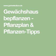 Gewächshaus bepflanzen - Pflanzplan & Pflanzen-Tipps