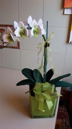 Orchidea pannolenci by Maria D'Eugenio