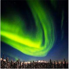 Northern lights over Denali national park, Alaska