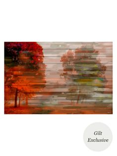 Fall Red (White Wood) by Parvez Taj at Gilt