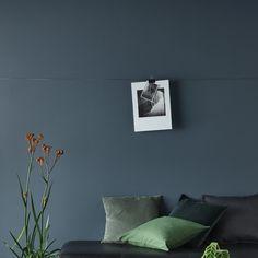 Gunmetal Grey — Porter's Paints