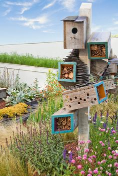 Okay. I love this idea. It's quirky and original ... and a great way to get the good critters into your garden that will eat all the pests you don't want.