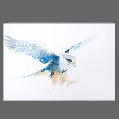 JEN BUCKLEY Original PEREGRINE Signed Watercolour PAINTING signed A3