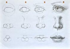 Facial features construction(cyclops tutorial :D) by anotherwanderer.deviantart.com on @deviantART