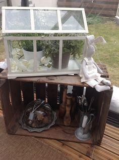 kasvihuone,pupu,vanha laatikko,kukkia,käpy