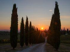 Tramonto su San Gusmè (Castelnuovo Berardenga) - Foto di Sergio Visone su http://sergiovisone.wix.com/sergio-visone - #SanGusme #Siena #Toscana