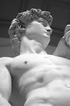 'I saw the angel in the marble and carved until I set him free.' - Michelangelo Buonarroti (1475-1564) https://musetouch.org/