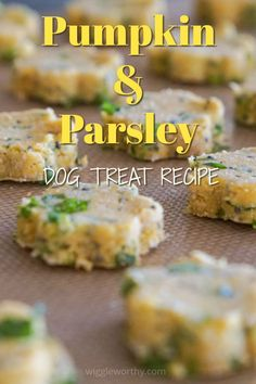 These fiber rich, gluten free treats will hit the spot with your best friend. Dog Biscuit Recipes, Dog Treat Recipes, Dog Food Recipes, Homemade Dog Cookies, Homemade Dog Food, Diy Dog Treats, Healthy Dog Treats, Grain Free Dog Food, Dog Diet