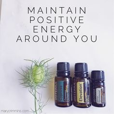 Maintain positive energy blend from Mary Crimmins: 2 drops cypress, 2 drops Elevation, and 1 drop sandalwood.  Blend (dilute in carrier oil) and apply behind ears.  Affirmation to say/think along with blend:  I create and radiate a contagious positive energy in my environment and with everyone whom I encounter.