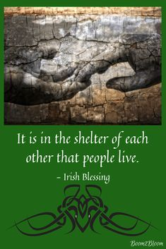 It is in the shelter of each other that people live Irish Blessing. Ireland eBook of Irish Blessings, Proverbs, Quotes & Toasts. Irish Prayer, Irish Blessing, Irish Proverbs, Proverbs Quotes, Landscape Designs, Landscape Architecture, Irish Quotes, Irish Sayings, St Patricks Day Quotes