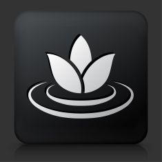 Black Square Button with Lily Flower Icon vector art illustration
