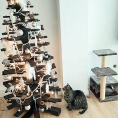 Naast onze kant en klare houten kerstbomen kopen, kun je natuurlijk ook zelf een houten boom maken! In dit stappenplan geven we handige doe het zelf tips voor het bouwen van je eigen kerstboom van hout. In ons DIY voorbeeld maken we een zogenaamde 3d houten kerstboom van draaibare latten. Geen tijd voor doe het zelven? Bekijk ook onze prefab houten kerstbomen. #klantfoto